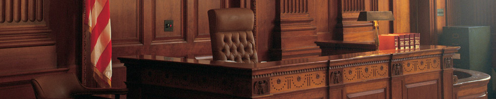 Briefing Cases